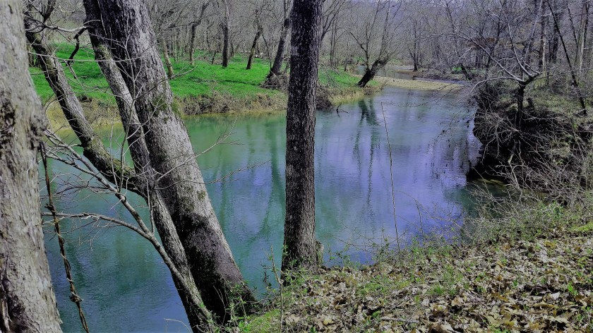 Sycamore Creek (2)