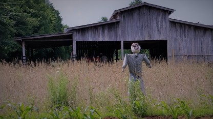 One of two scarecrows who are guarding our corn patches. This guy's name is Straw-Dude. He guards the Indian Corn.